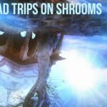 Bad Trips On Shrooms