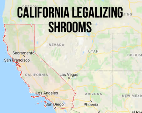 California Legalizing Shrooms