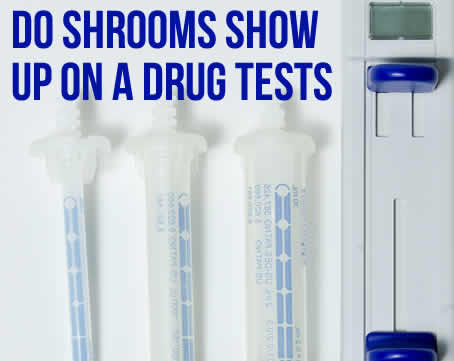 Do Shrooms Show Up On A Drug Test