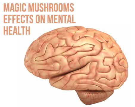 Magic Mushrooms Effects On Mental Health