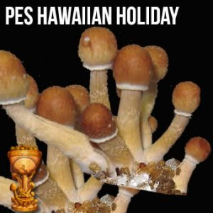 PES Hawaiian